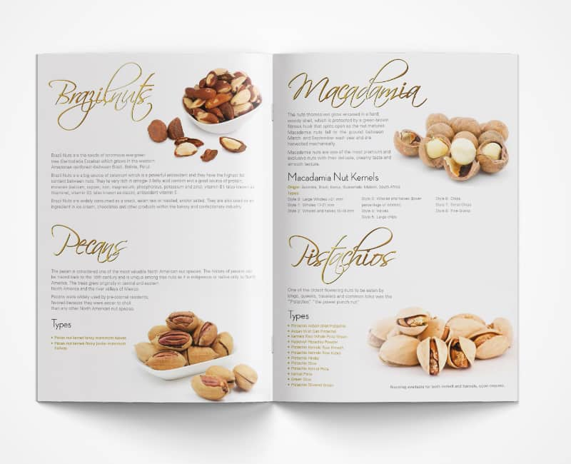 Corporate Brochure Design Services